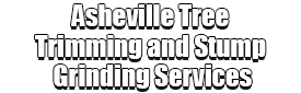 Asheville Tree Trimming and Stump Grinding Services Logo-We Offer Tree Trimming Services, Tree Removal, Tree Pruning, Tree Cutting, Residential and Commercial Tree Trimming Services, Storm Damage, Emergency Tree Removal, Land Clearing, Tree Companies, Tree Care Service, Stump Grinding, and we're the Best Tree Trimming Company Near You Guaranteed!