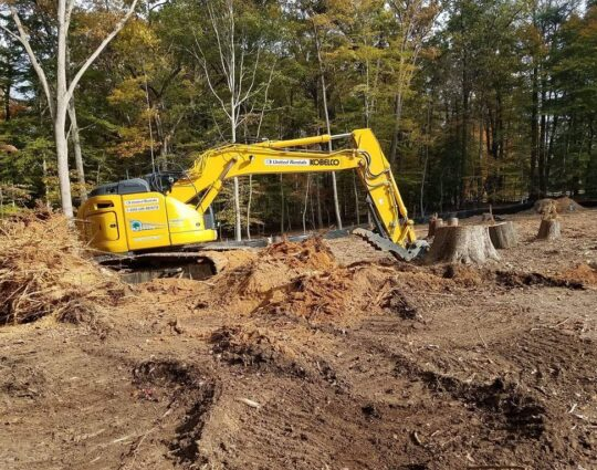 Land Clearing-Asheville Tree Trimming and Stump Grinding Services-We Offer Tree Trimming Services, Tree Removal, Tree Pruning, Tree Cutting, Residential and Commercial Tree Trimming Services, Storm Damage, Emergency Tree Removal, Land Clearing, Tree Companies, Tree Care Service, Stump Grinding, and we're the Best Tree Trimming Company Near You Guaranteed!