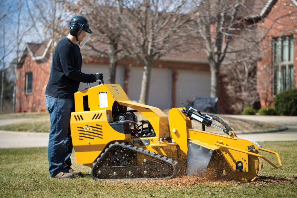 Weaverville-Asheville Tree Trimming and Stump Grinding Services-We Offer Tree Trimming Services, Tree Removal, Tree Pruning, Tree Cutting, Residential and Commercial Tree Trimming Services, Storm Damage, Emergency Tree Removal, Land Clearing, Tree Companies, Tree Care Service, Stump Grinding, and we're the Best Tree Trimming Company Near You Guaranteed!